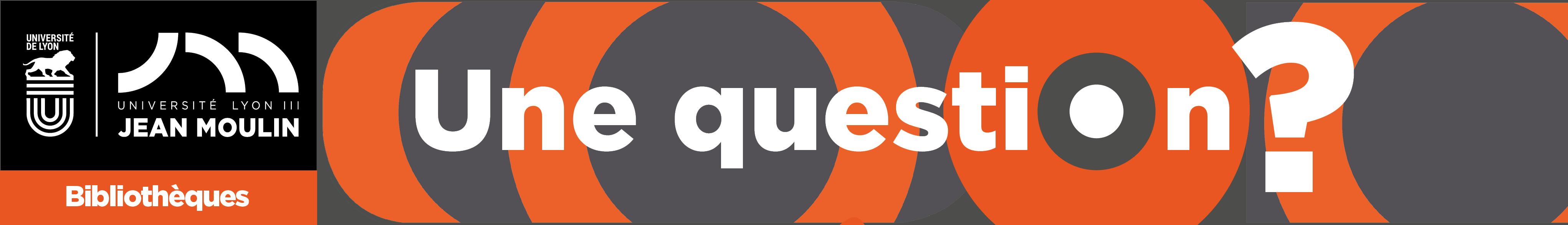 Service de Questions-Réponses des BU de Lyon 3
